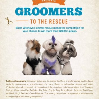 , Groomers to the Rescue! Winners Announced, Vetericyn Animal Wellness