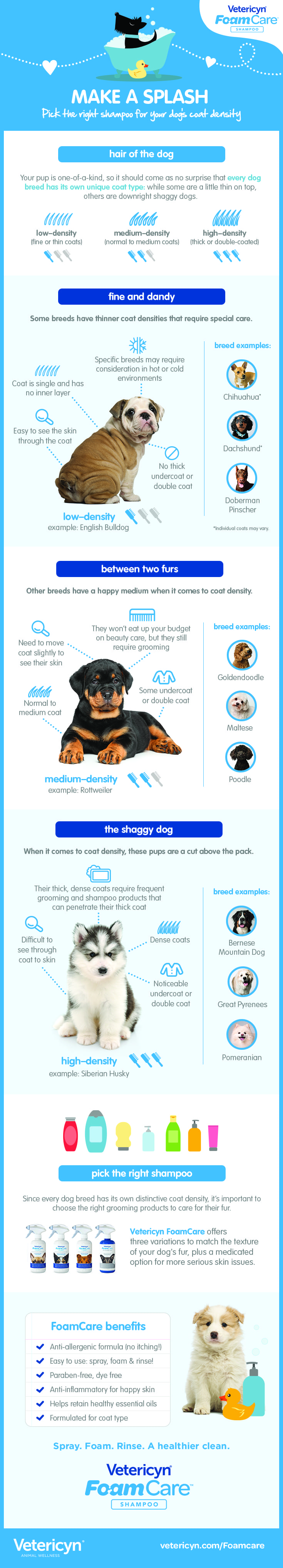 shampoo, Infographic: Pick The Right Shampoo for Your Dog's Coat, Vetericyn Animal Wellness