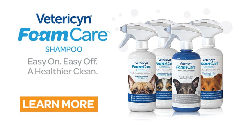 at-home, 6 At-home Pet Care Habits to Try in 2018, Vetericyn Animal Wellness