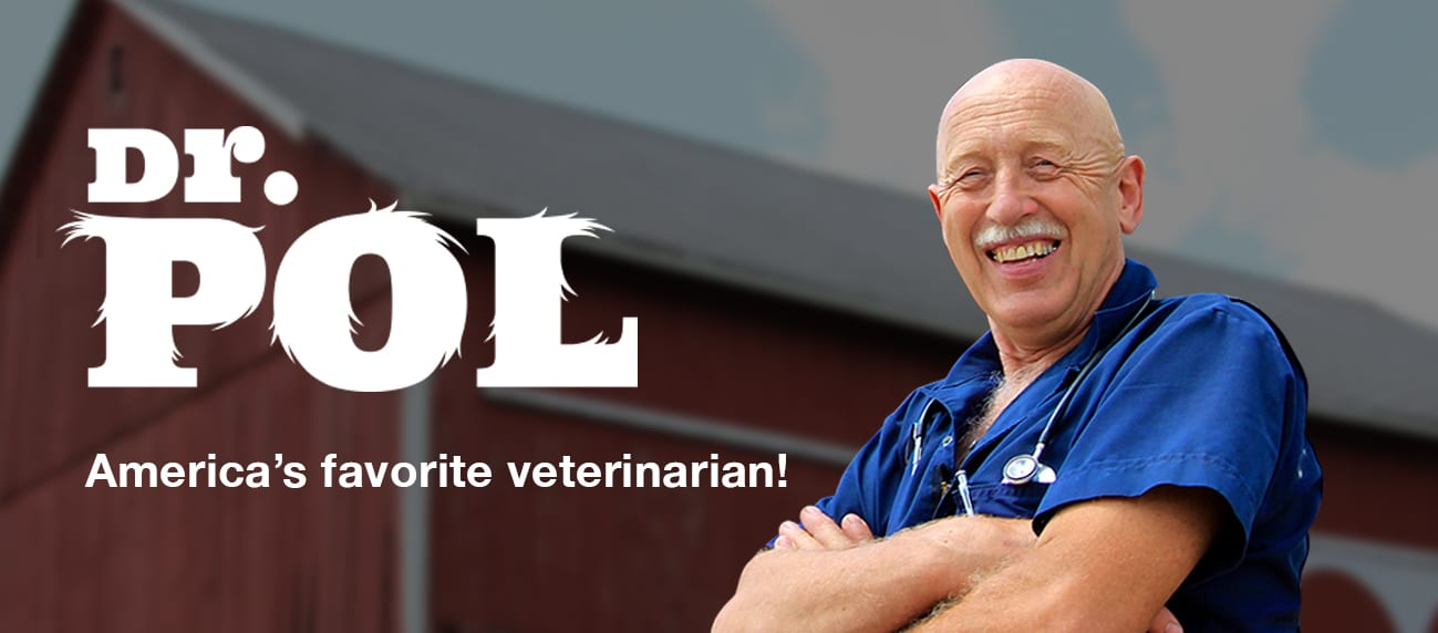 11 Questions With Dr  Pol - Vetericyn Animal Wellness