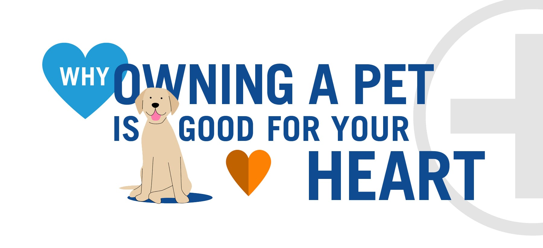 heart, Why Owning a Pet is Good For Your Heart – Infographic, Vetericyn Animal Wellness