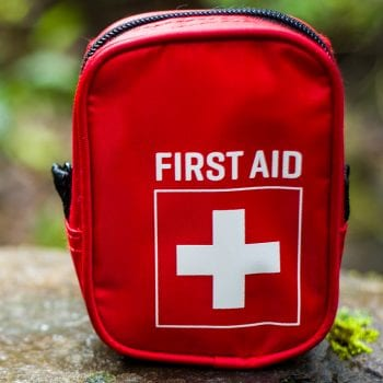 Some of the top first aid supplies for horses, chickens, dogs, and cats