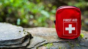 The top 5 first aid supplies for horses, dogs, chickens, and cats