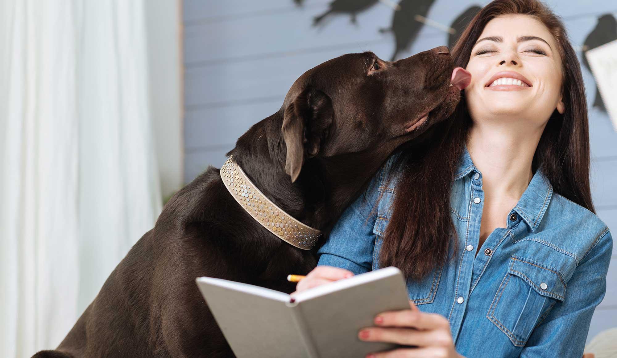 , Skin Irritation & Hot Spot Care, Vetericyn Animal Wellness