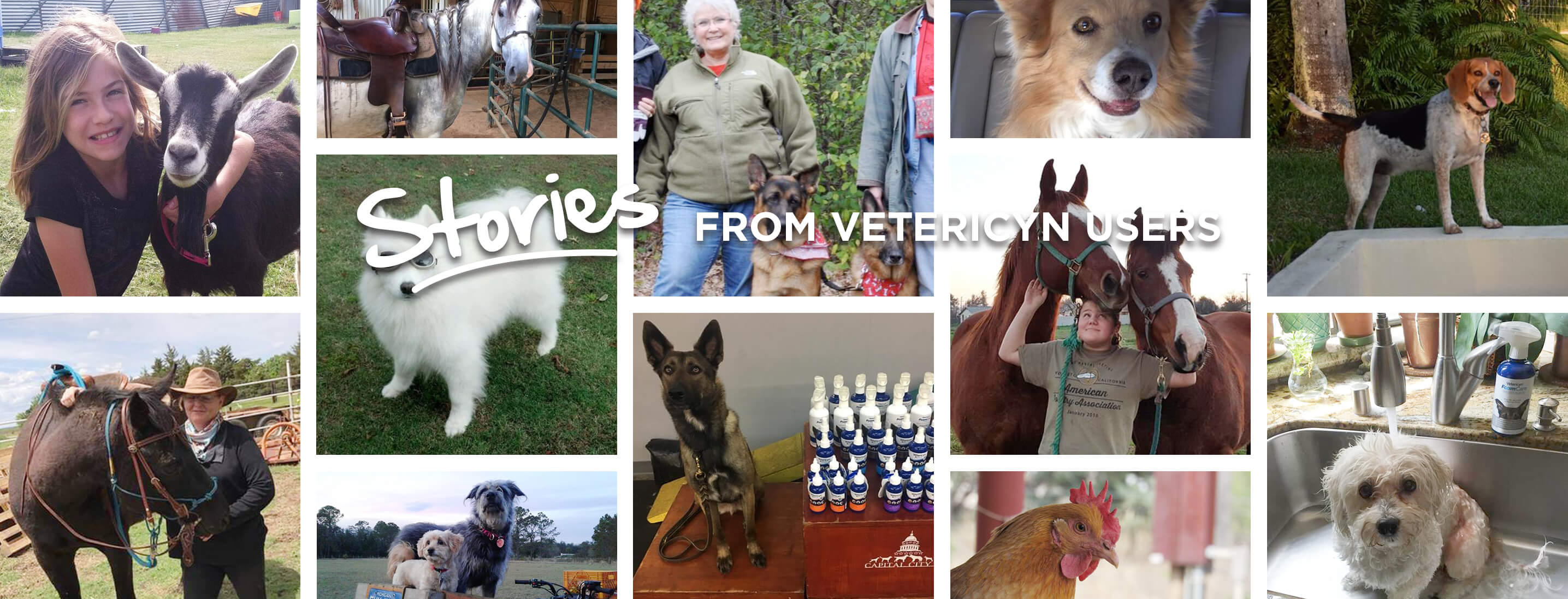 , User Stories, Vetericyn Animal Wellness