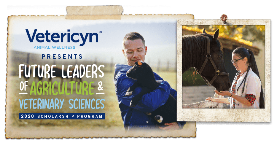 Scholarship, Future Innovators of Agriculture & Veterinary Sciences Scholarship, Vetericyn Animal Wellness