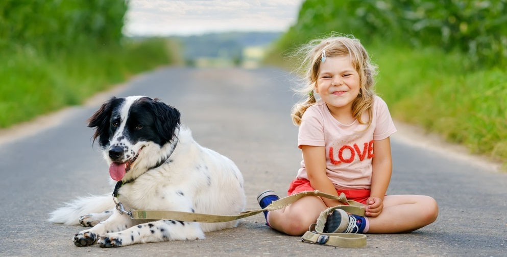 Cute little preschool girl going for a walk with family dog in nature